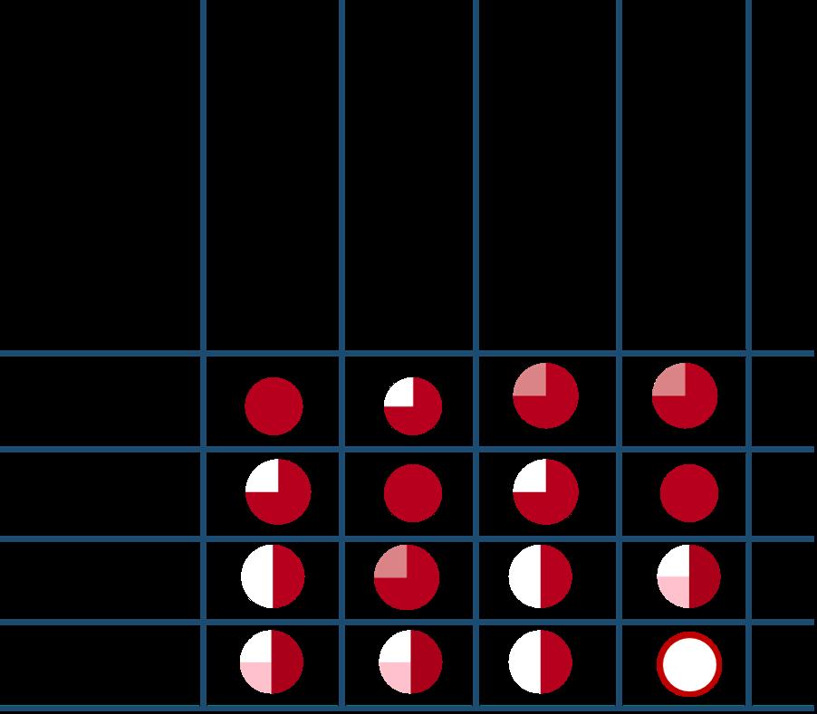 Skill Matrix mit Kompetenzrad (zum Vergrößern klicken)